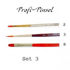 Profi-Pinsel Set 3