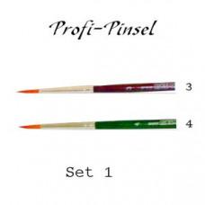 Profi-Pinsel Set 1
