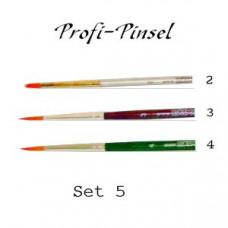 Profi-Pinsel Set 5