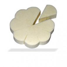 Latex-Design-Schwämmchen